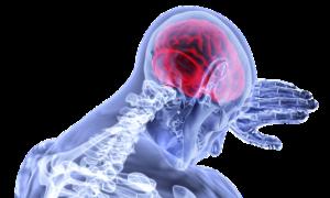 реакция мозга на боль